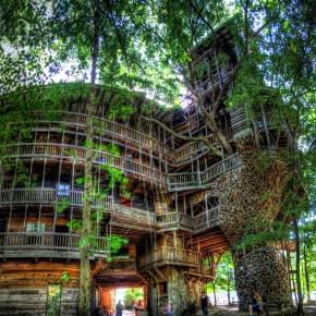 Arquitectura Arbórea – La casa árbol más grande delmundo