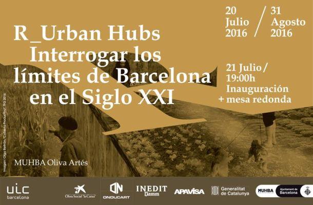 R_Urban Hubs